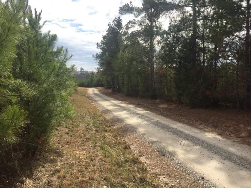 Large Tract minutes from Chapin, SC Image