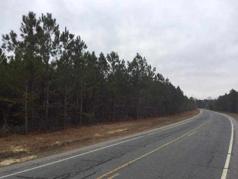 81 acres near Fayetteville, NC Image