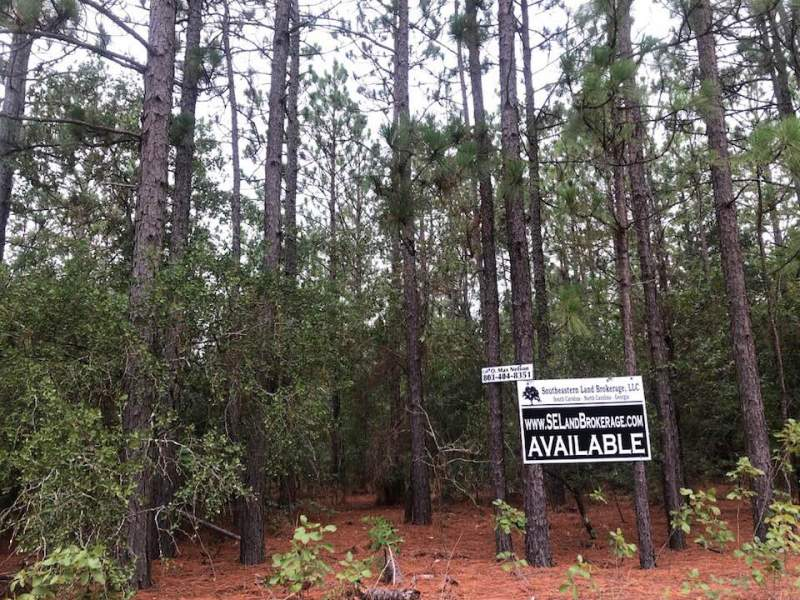 Private Homesite in Pelion, SC Image