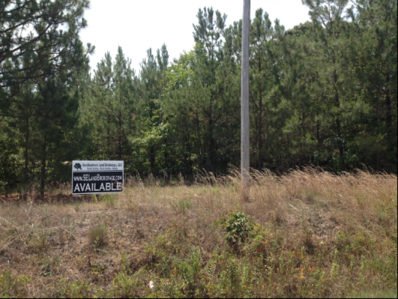 Private Homesite in Bishopville, SC Image