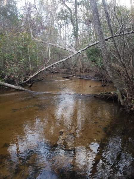 12.48 acres with Creek in Gilbert, SC Image
