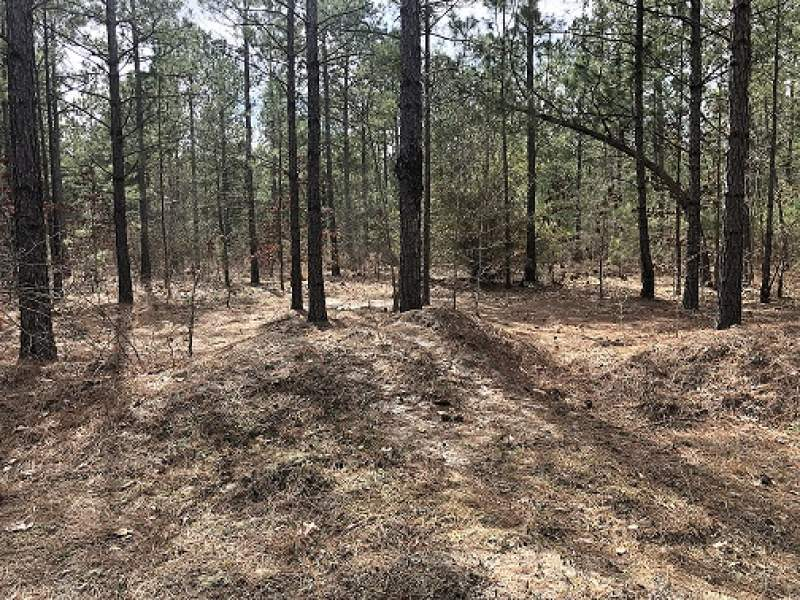 Blue Diamond-Lot 5–5.605 Acres-$22,420.00 Image