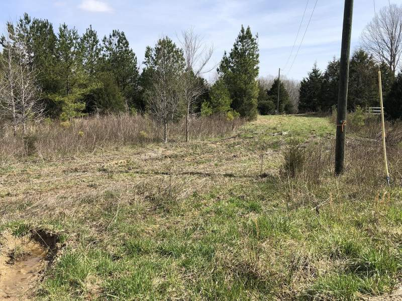 Charlie Stacks Rd, Lancaster, Lancaster County, SC-Lot 7 -6.031Acres-$48,248.00 Image