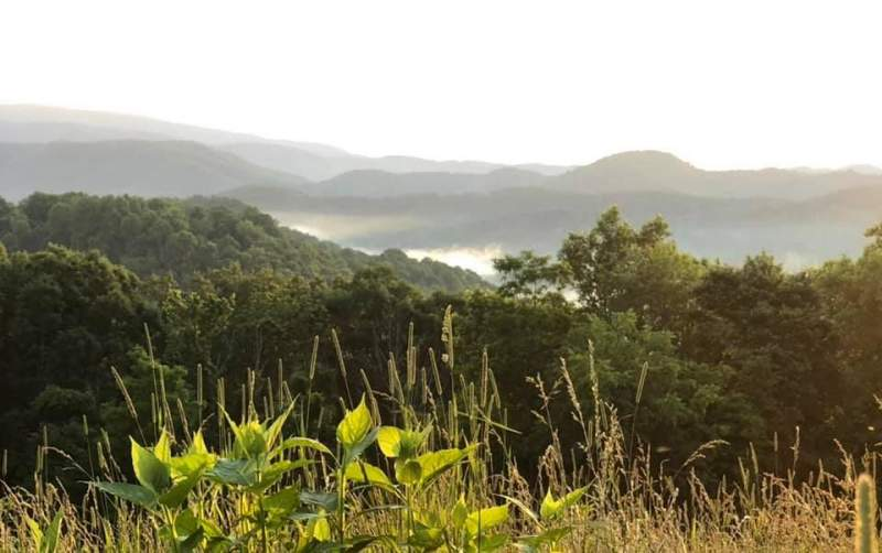 775 acres in Scenic Greenbrier County, WV Image